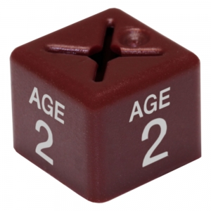Coat Hanger Size Cubes Childrenswear AGE 2 MAROON - Pack 50
