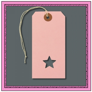 Pink Girls Gift Tags with Punched STAR 120mm x 60mm - Pack 10
